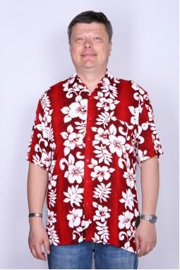 Рубашка мужская BALI