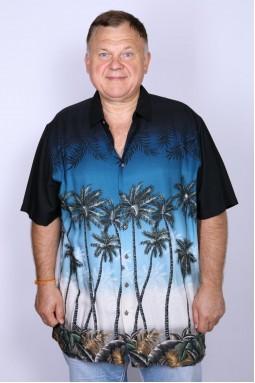 Рубашка мужская Basic Editions 08074